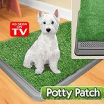 Potty Patch Review As Seen On TV