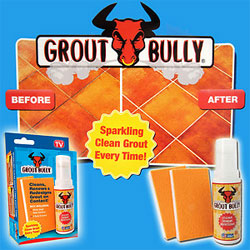 Grout Bully Review As Seen On TV